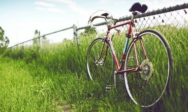 Шведская полиция разыскивает мужчину, который занимался сексом с велосипедом